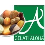 front-logo-aloha2